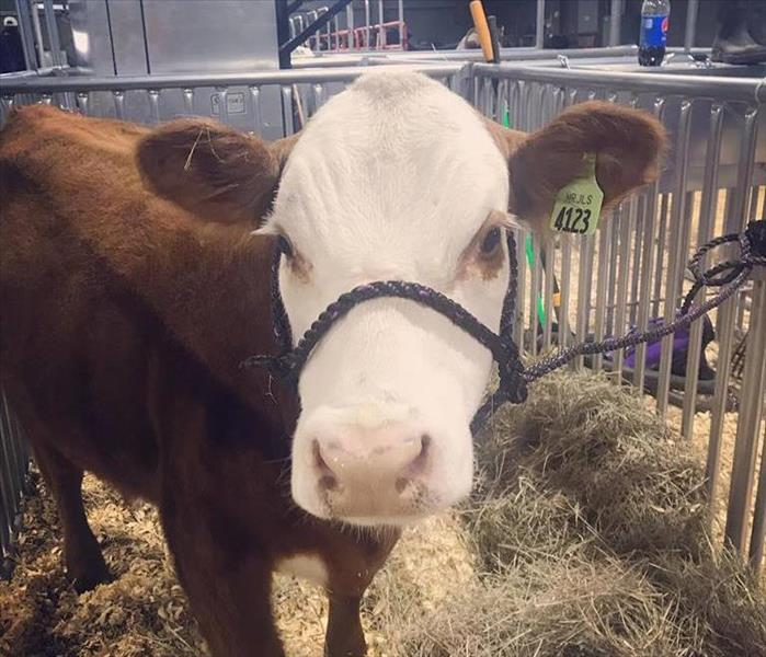 Learn more about us