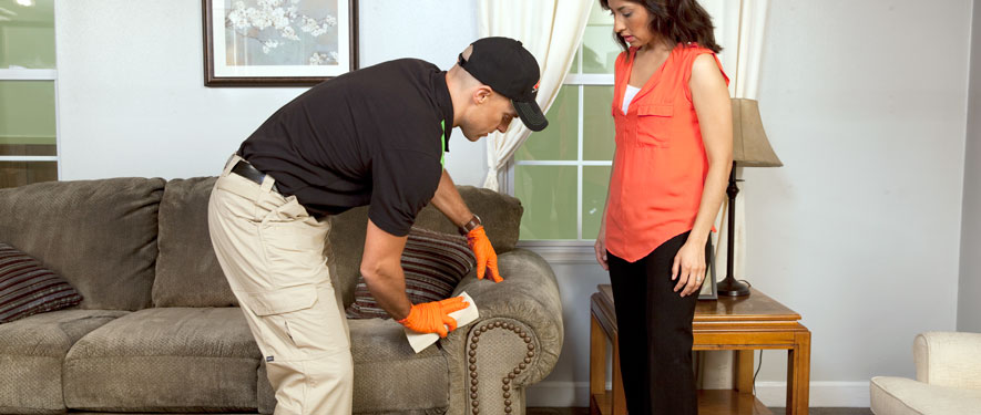Fort Smith, AR carpet upholstery cleaning