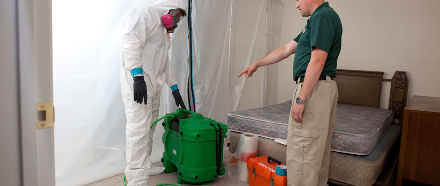 Fort Smith, AR mold removal process